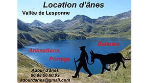 adour-anes-pyrenees